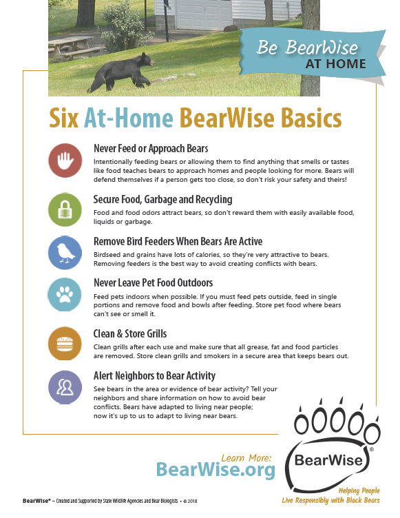 Bearwise at Home Tips